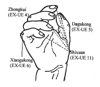 The shixuan points
