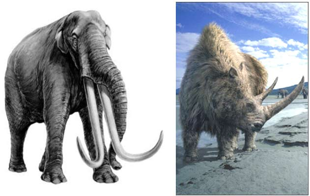 Elephant and wooly mammoth