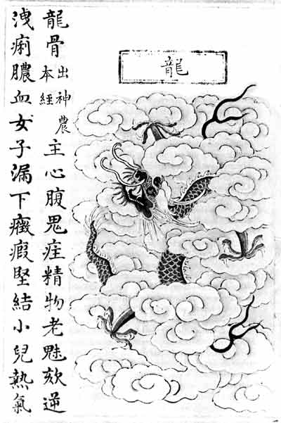 Illustration of the dragon as source of dragon bone