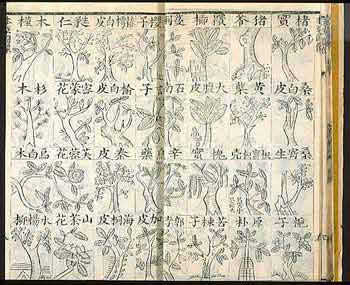 Cover and sample page of Wang Ang's Bencao Beiyao, an illustrated 1740 edition, volume 1 of 6 volumes.