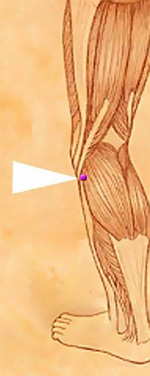 Treatment of Frozen Shoulder Using Chinese Medicine