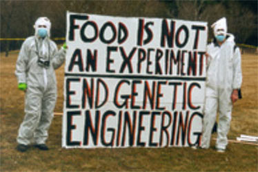 genetic engineering controversial issues