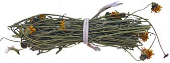 Bundle of greenthread.