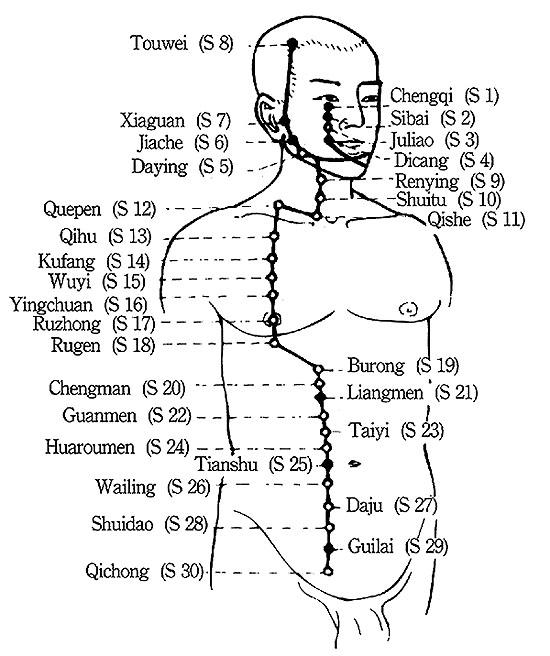 ZUSANLI (Stomach-36)